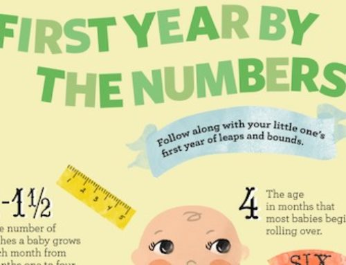 First Year By Numbers