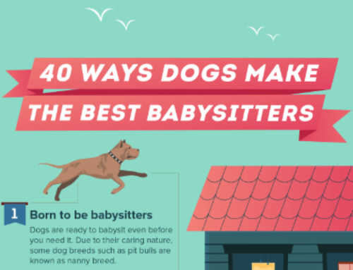 40 Ways Dogs Make The Best Babysitters